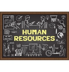 Human Resorces on chalkboard vector image