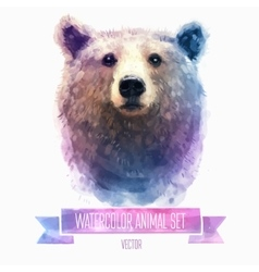 Set of watercolor Cute bear vector