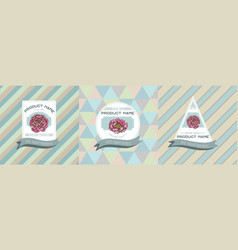 three colored labels with peony vector image