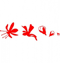 flowers and bud vector image vector image