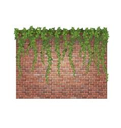 Brick wall and ivy vector image vector image