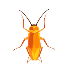 cockroach insect colorful cartoon character vector image