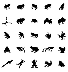 Frog silhouettes set vector image