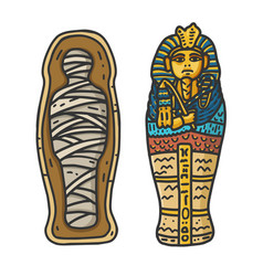 ancient egyptian tutankhamun mummy in sarcophagus vector image