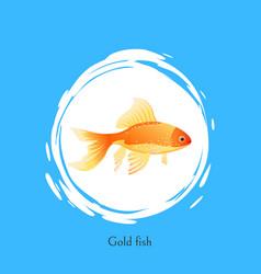 Aquarium gold fish picture in white spot poster vector