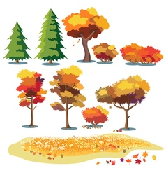 Autumn Plants vector image