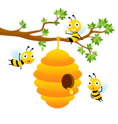 bee characters cartoon mascot design vector image