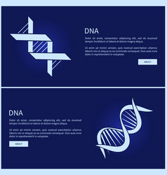 dna collection web pages vector image