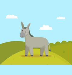 Donkey farm animal graze on meadow colorful banner vector