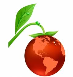 earth fruit vector image