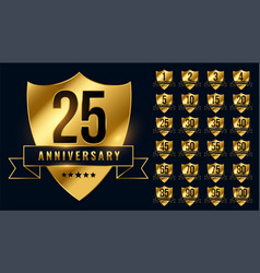 Premium golden anniversary logotype emblem big set vector