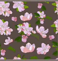 Seamless pattern with apple tree blossom vector