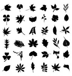 set leaf vector image