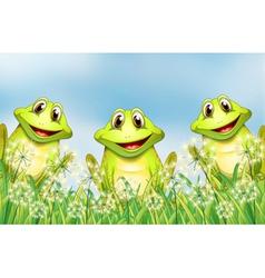 Three happy frogs in the garden vector