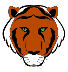 tiger with green eyes on white background vector image