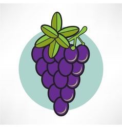 Grape icon vector image vector image