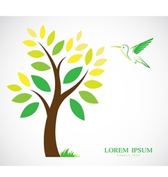 Trees and hummingbirds vector image