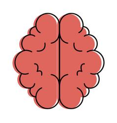 brain organ isolated icon vector image