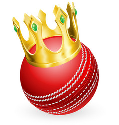 King of cricket vector