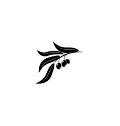 olive branch logo black on white background vector image