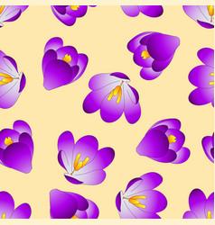Purple crocus flower on beige ivory background vector