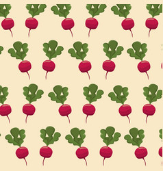 radish nutrition seamless pattern image vector image