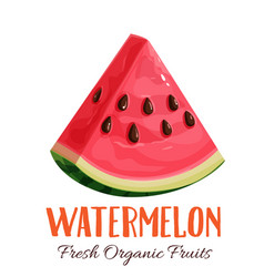 Watermelon vector
