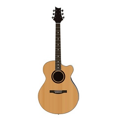 Acoustic guitar on white background vector image