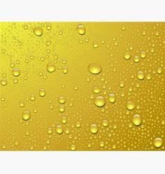 beer drops vector image