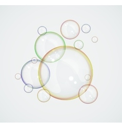 Flying soap bubbles vector image