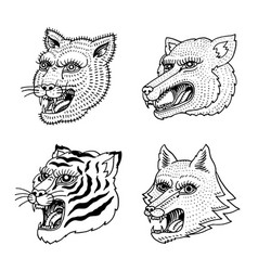 head of wild animal predator puma wolf fox tiger vector image