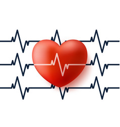 heart and pulse 3d heart with cardiogram vector image