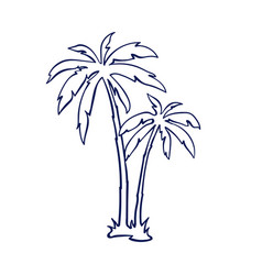 tropical palm trees vector image vector image