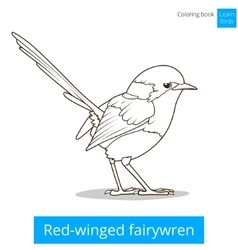 Red winged fairywren bird coloring book vector image vector image
