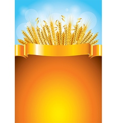 wheat golden background vector image vector image