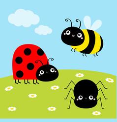 Bee bumblebee spider ladybug ladybird lady bug vector