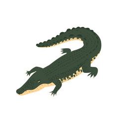Crocodile isometric icon vector