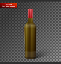 glass color wine bottle vector image