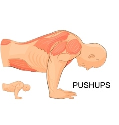 Man performing push-UPS vector