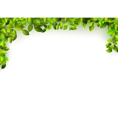 Natural green background EPS10 vector