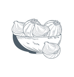 Onions in bowl hand draw vector