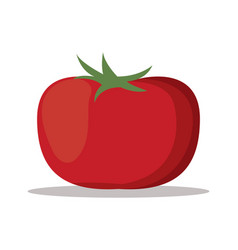 Tomato nutrition healthy image vector