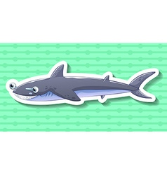 Shark smiling on green background vector image vector image