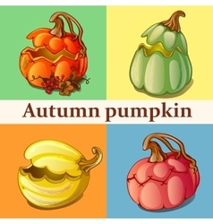 Four icons with pumpkin vector image