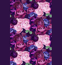 colorful blue and violet roses pattern vector image