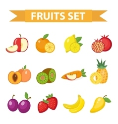 Fruit set Fruits icon flat vector image vector image