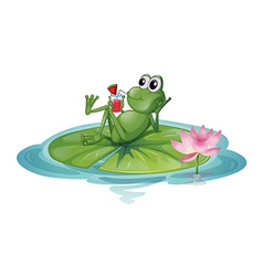 A frog relaxing on a leaf vector image