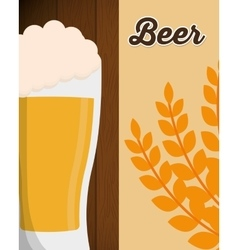 Big beer glass foam with wheat leaf poster vector
