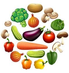 Different kind of vegetables vector