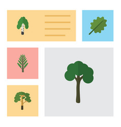 Flat icon ecology set of timber evergreen wood vector
